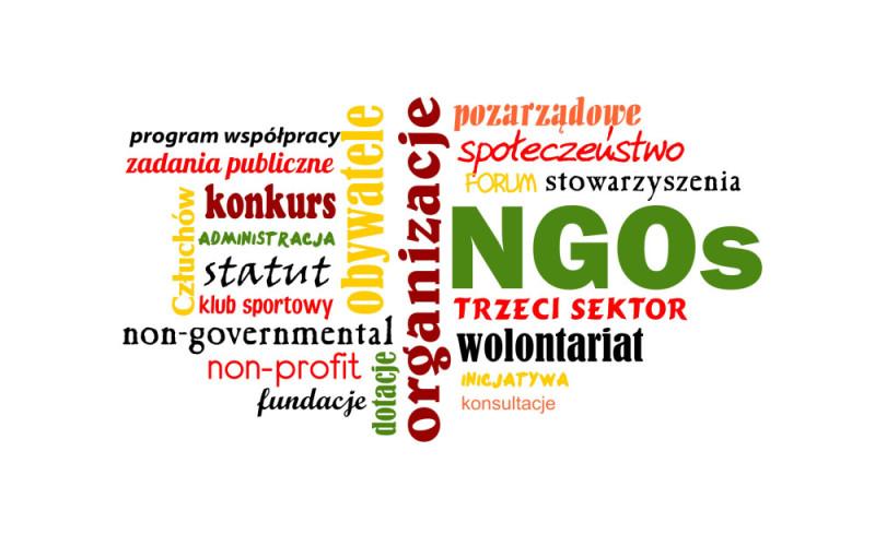 organizacje_pozarzadowe